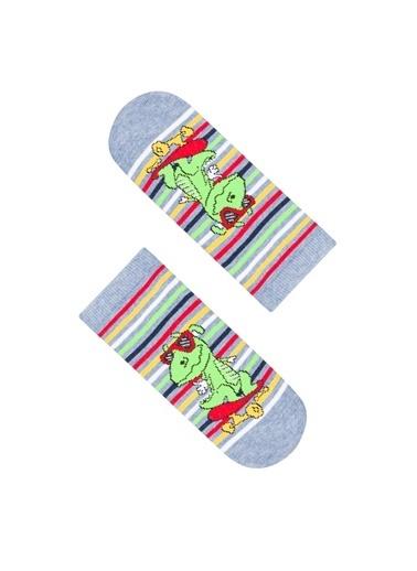 Penti Erkek Çocuk Little Dino 2Li Patik Çorap Renkli